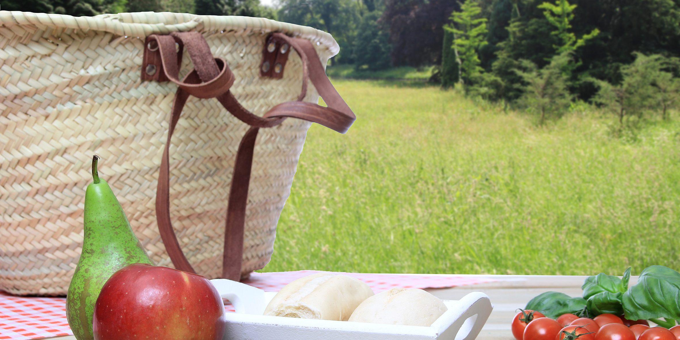 web picknick shutterstock_157054403